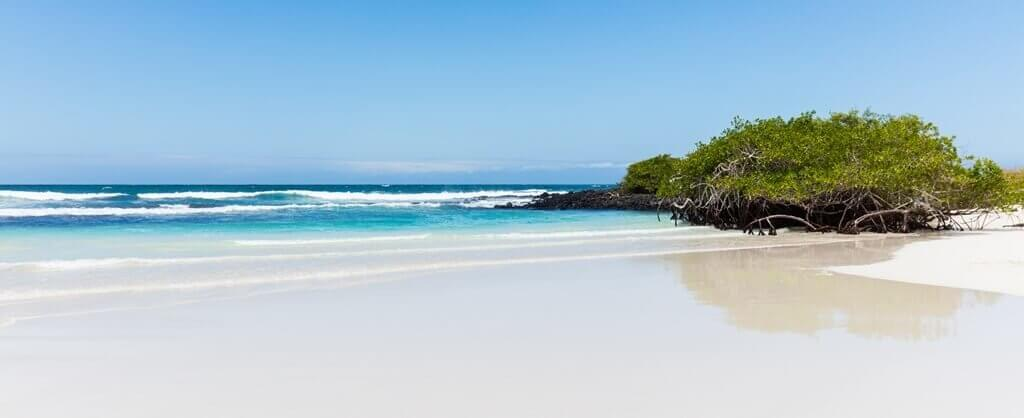 Bahia Tortuga Galapagos Eilanden