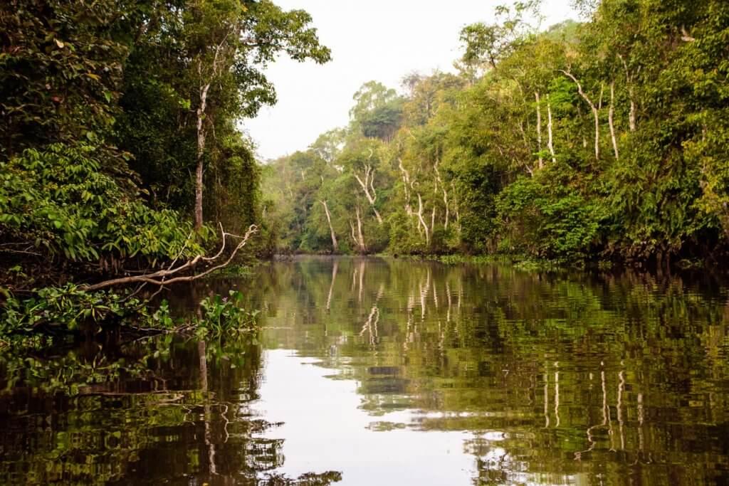 kinabantangang rivier