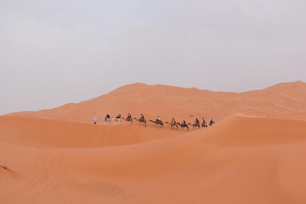 Sahara woestijn, de mooiste natuur van Marokko