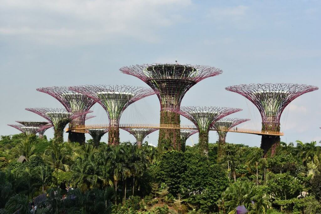 overstappen singapore Garden by the Bay