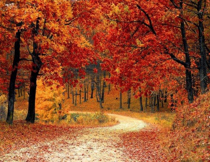 4 tips voor een lang weekend weg of herfstvakantie