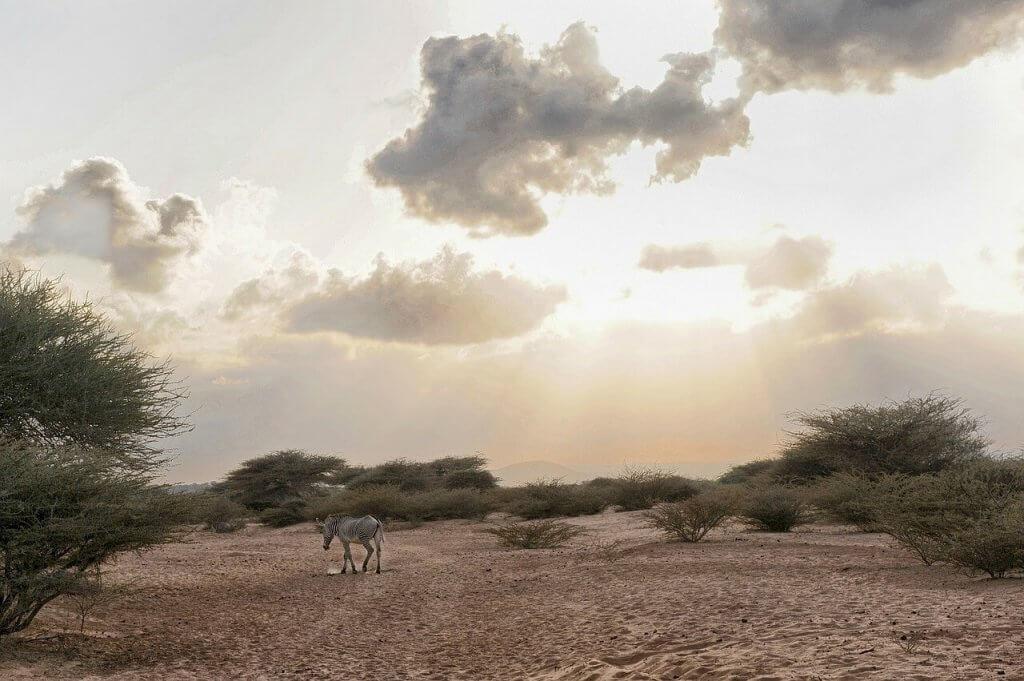 onderschatte-landen-Djibouti