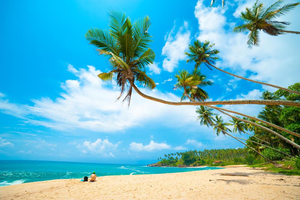 tropisch strand sri lanka meivakantie zon