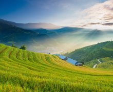 Prachtig landschap met rijstvelden in Sapa - Vietnam