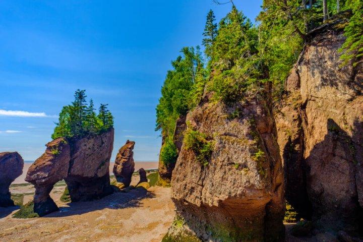 Dit zijn de 5 meest bijzondere rondreizen in Noord-Amerika