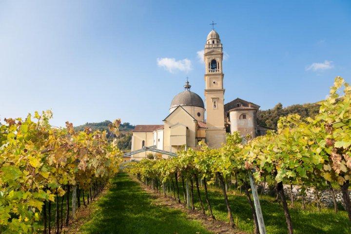 De perfect wijnreis door Italië!