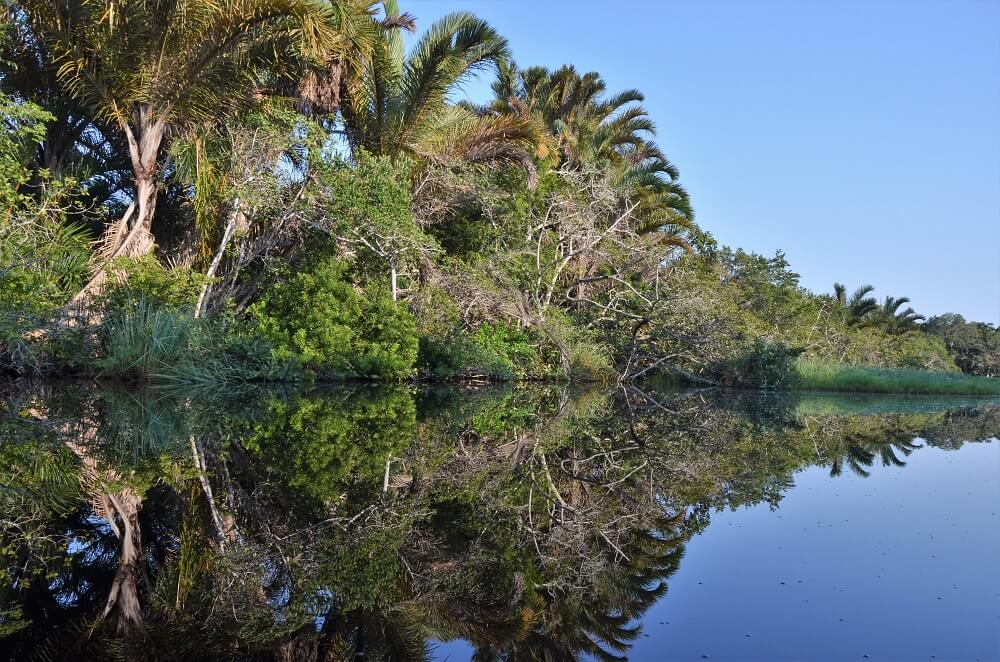 Kosi Bay Nature Reserve