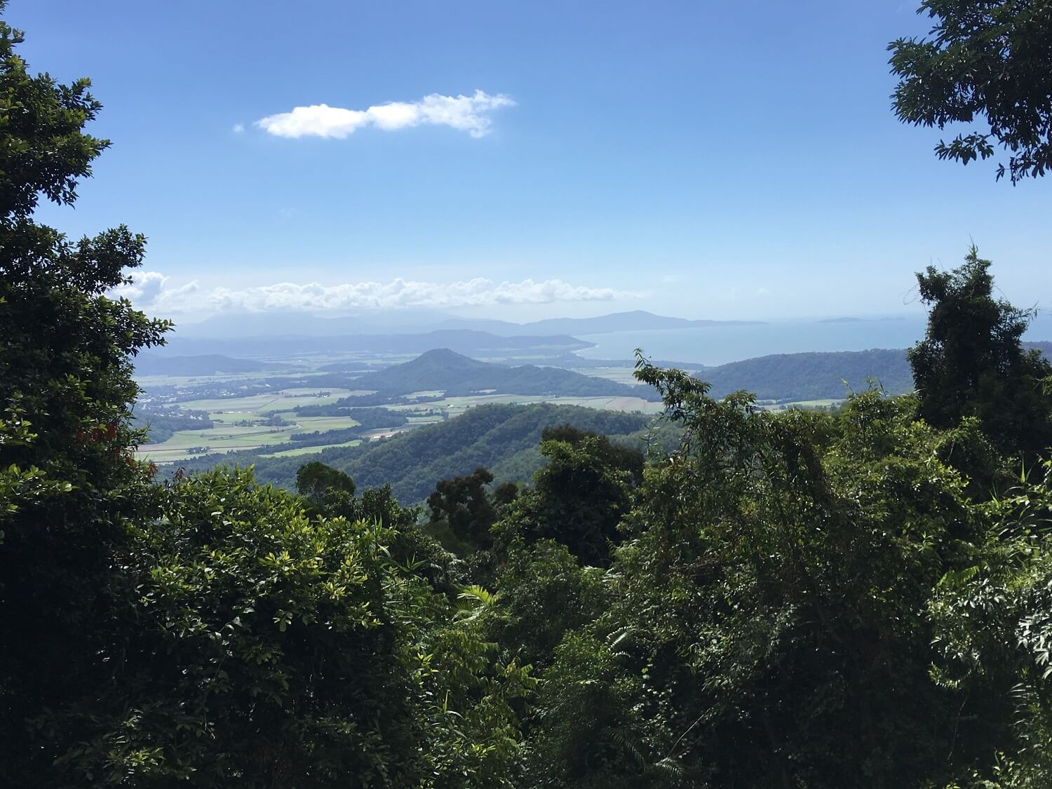 Trip Daintree Rainforest, twee dagen