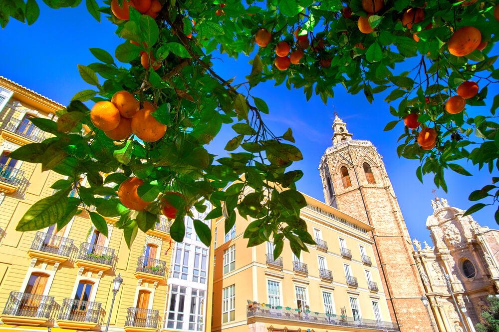 Valencia restaurants