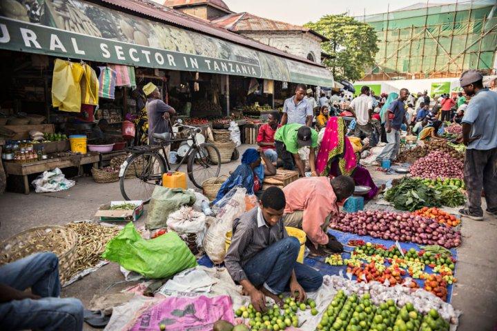 Visum voor Tanzania aanvragen, zo werkt het