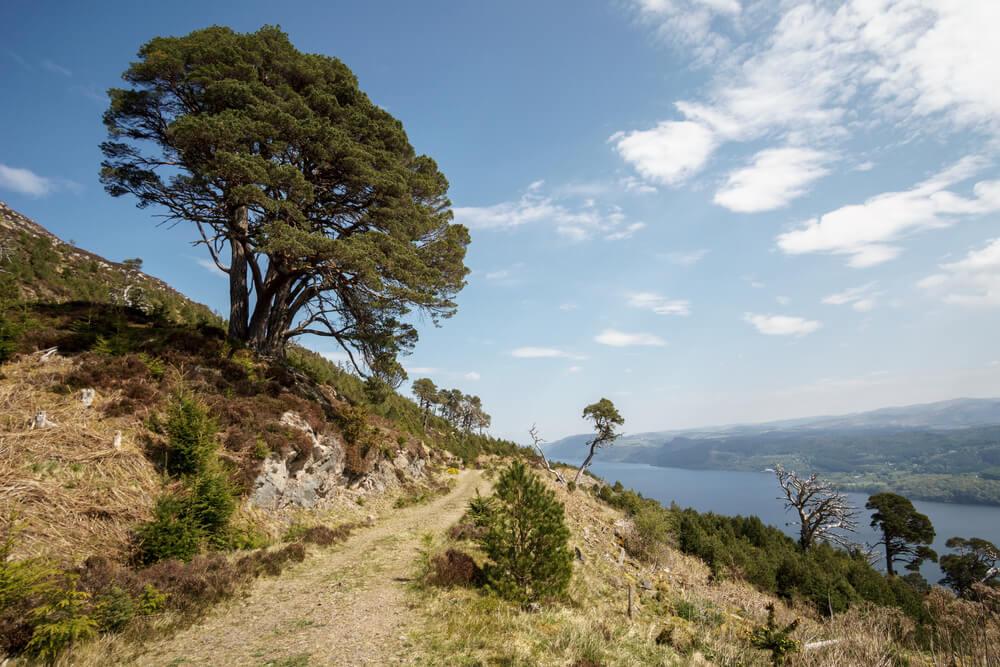 Uitzicht op Loch Ness op de Great Glen Way