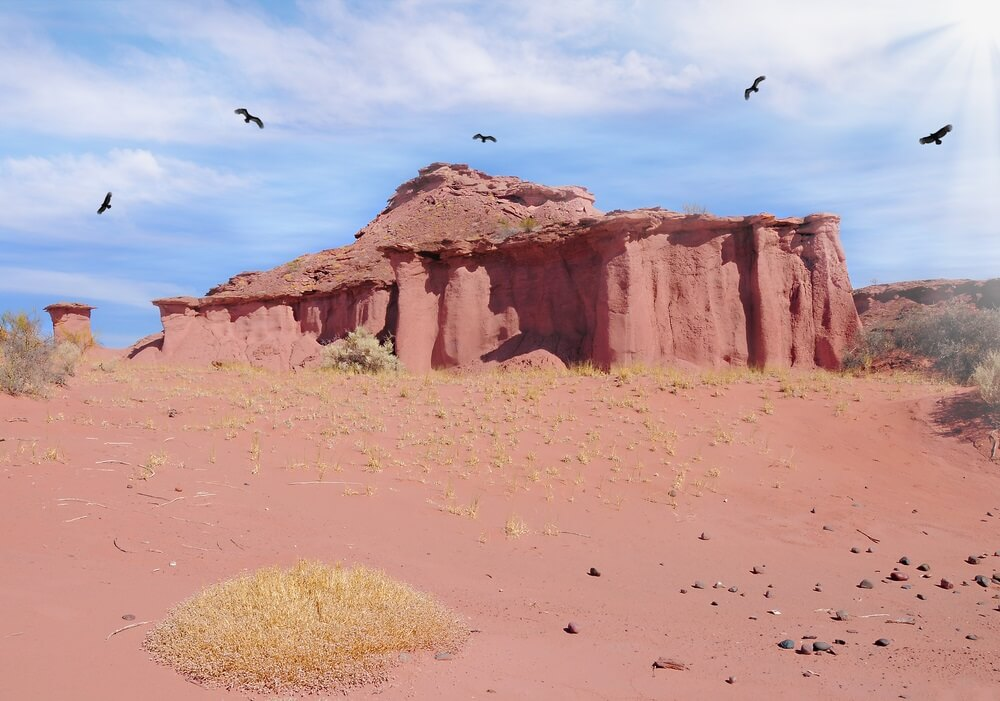condors in Talampaya nationaal park argentinië