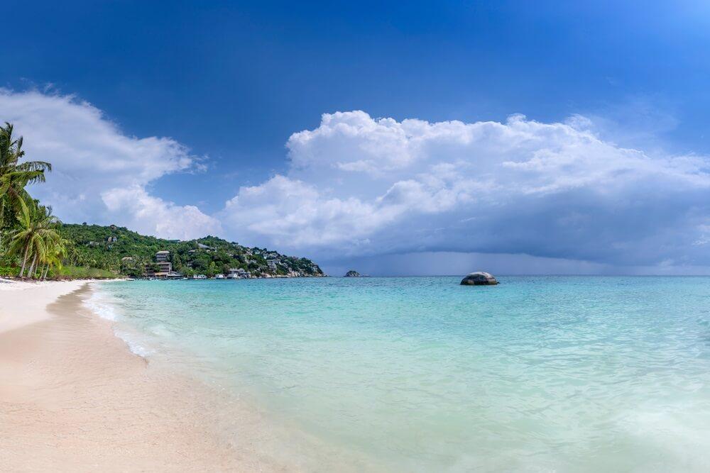 shark bay koh tao thailand