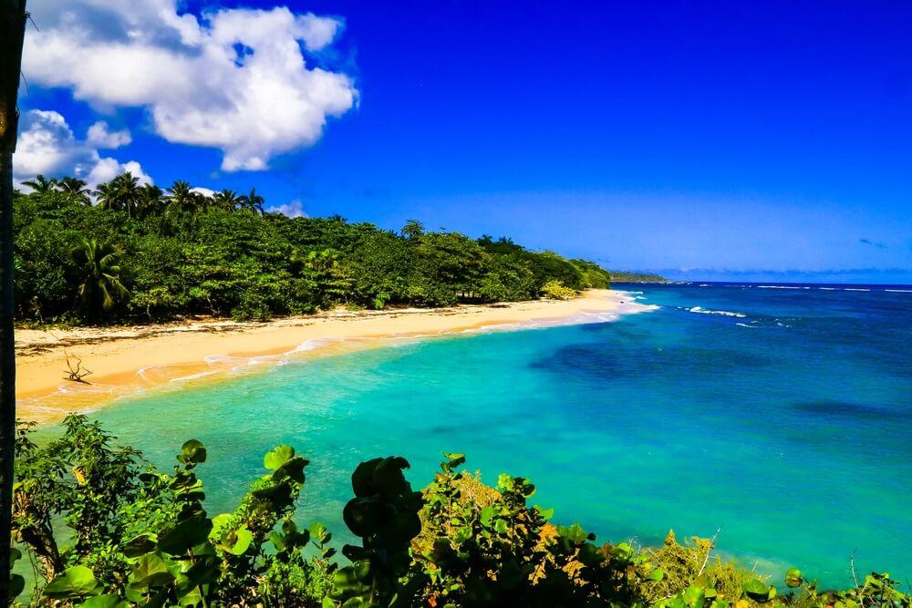 Turquoise zee en klein, rustig strand met groene bossen bij Playa Magana in Cuba.