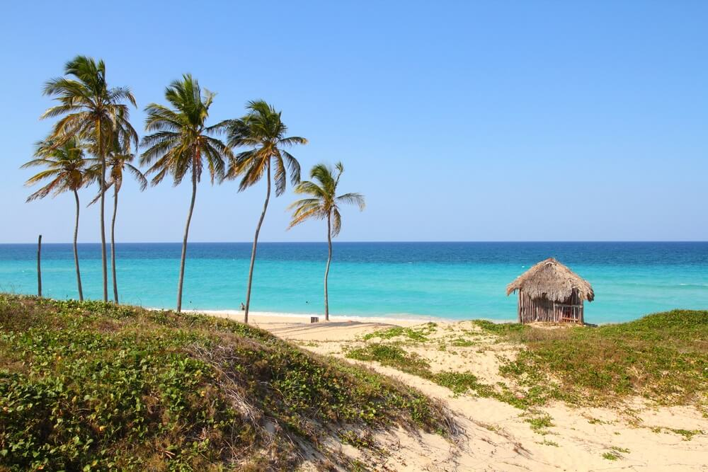 Playa del Este in Cuba met een wit strand en turquoise zee op de achtergrond. Palmbomen waaien in de wind.