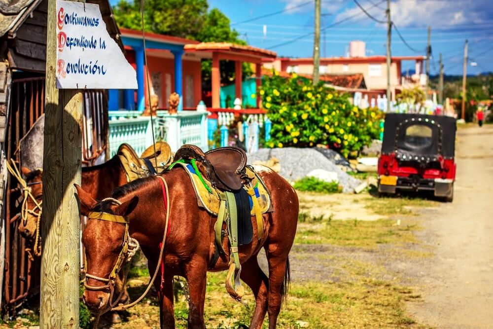 Paarden klaar voor een tocht door de Vinales Valley
