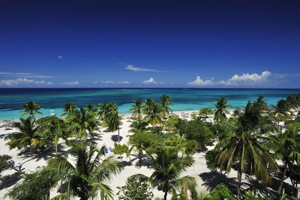 Blauwgroene zee met op de voorgrond een parelwit strand, met tal van palmbomen bij Guardalavaca strand in Cuba.