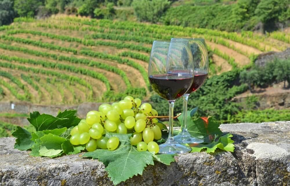 Twee glazen portwijn met een groene druiventros ernaast, op de achtergrond een wijngaard.