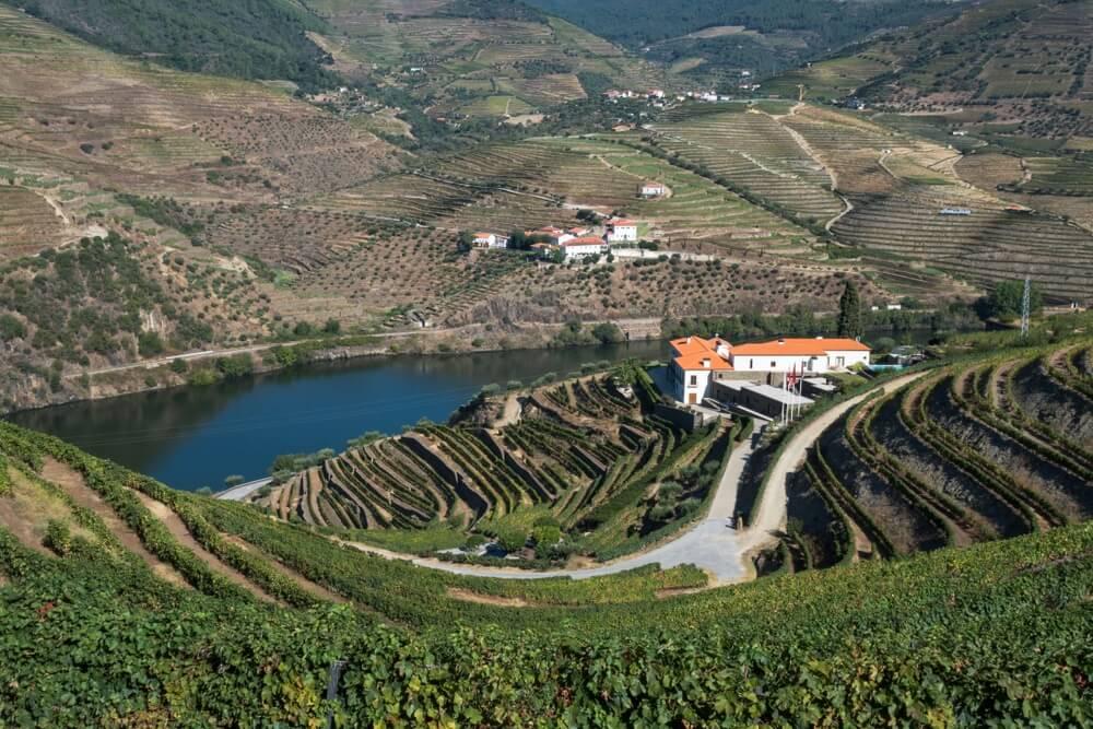 Wijngaarden met op de achtergrond een Quinta (wijnboerderij), gelegen op een heuvel in de Douro vallei. Ernaast loopt de Douro rivier.