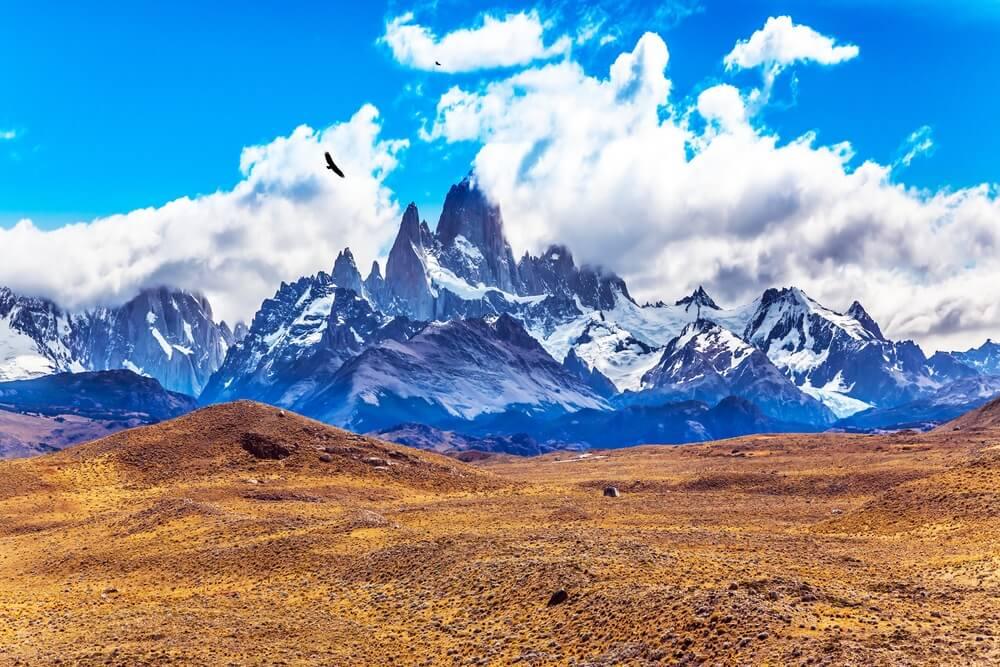 Patagonische woestijn met hoge besneeuwde bergtoppen op de achtergrond, blauwe lucht met witte wolken en een condor vliegt rechtsboven in de lucht.