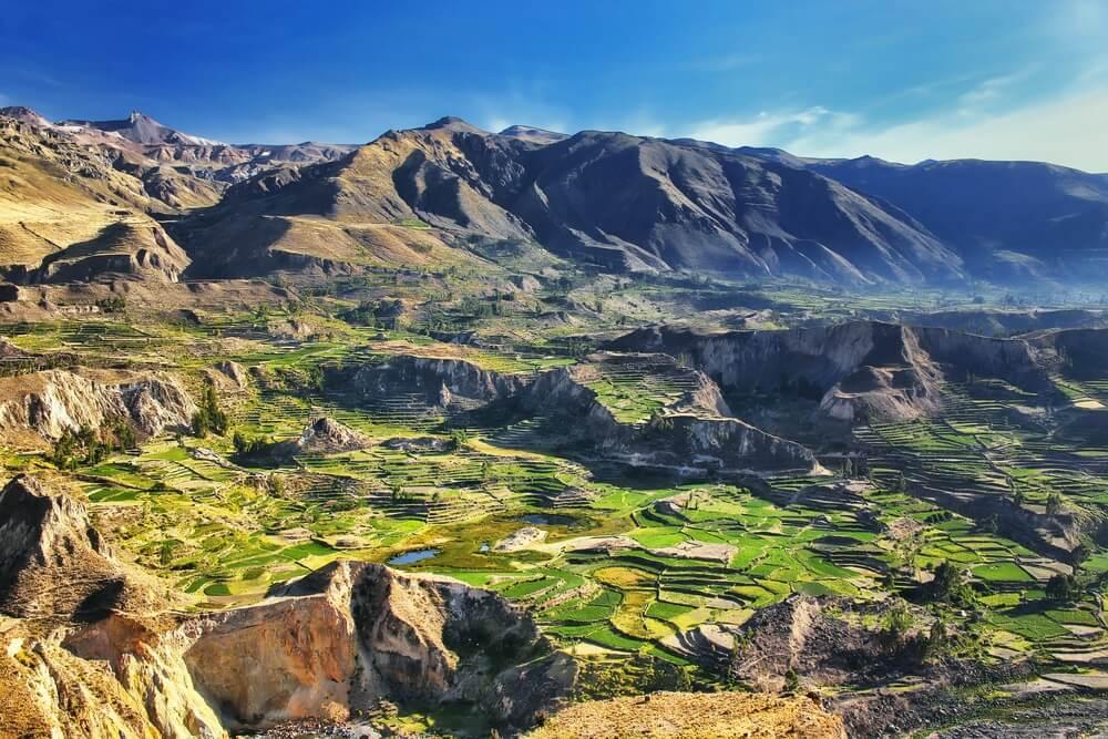 Trappterrassen in Colca Canyon in Peru. Het is een van de diepste canyons ter wereld met een diepte van 3.270 meter.
