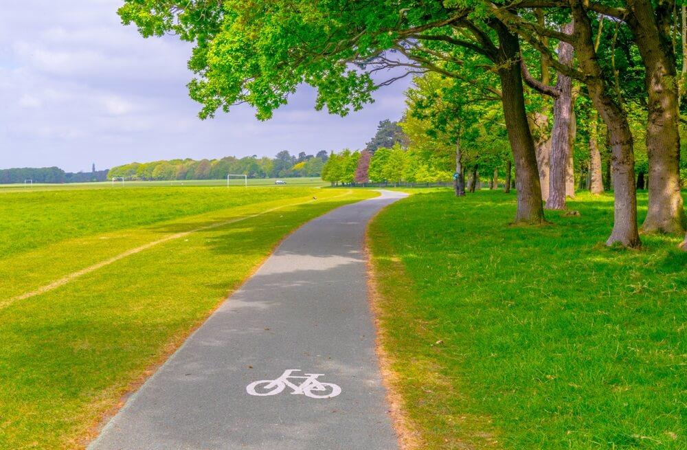 Phoenix Park in Dublin. Groene grasvelden aan weerszijden, fietspad in het midden. Rechts hoge bomen.