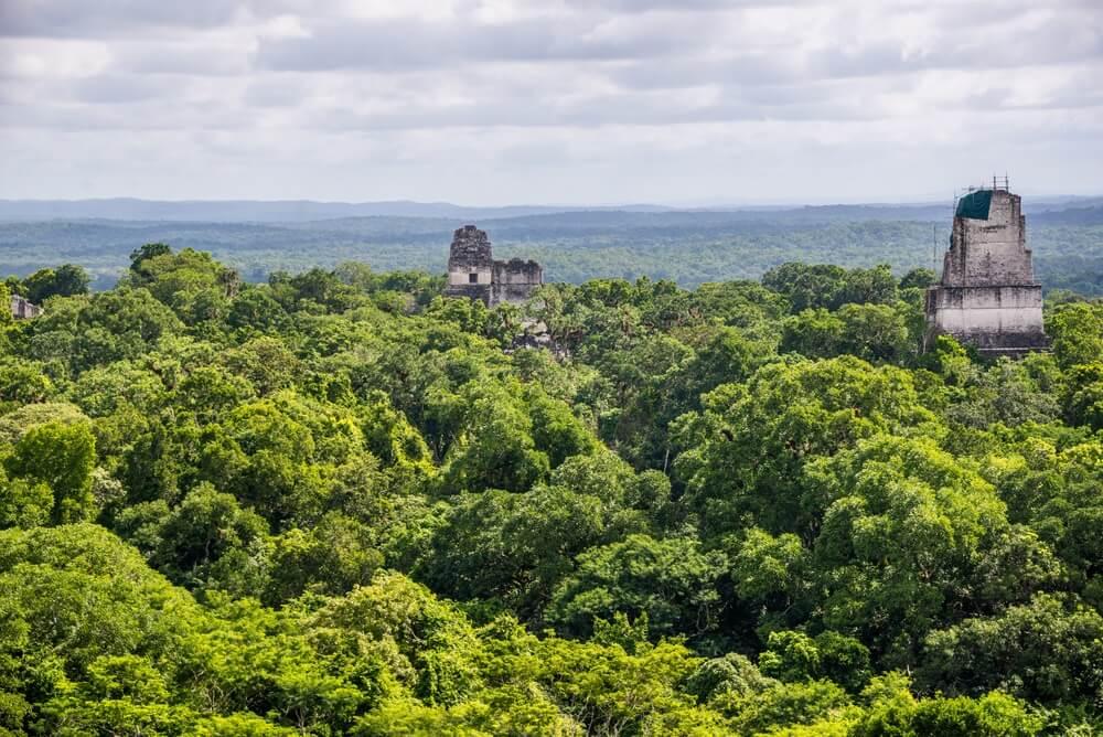 Panorama van het nationale park van Tikal. Avontuur in Guatemala.