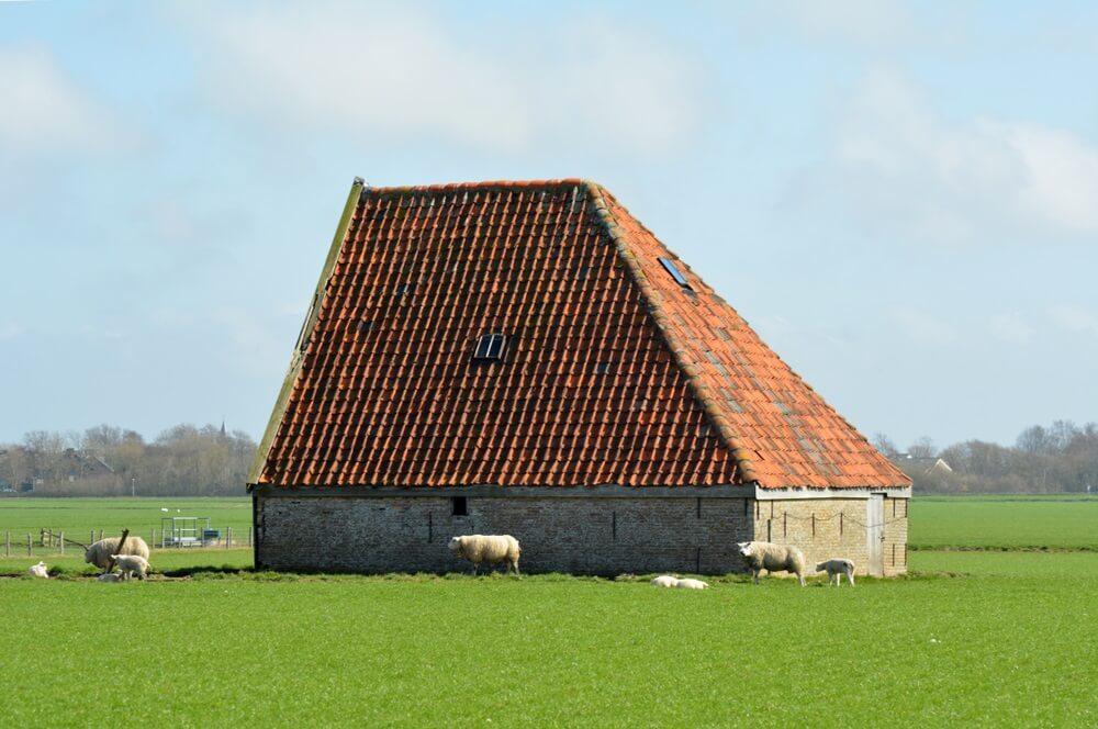 Authentieke boerderij op de Waddeneilanden, Texel, Nederland.