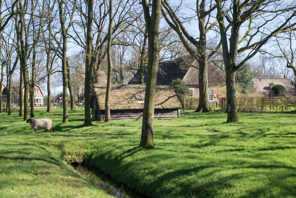 Boerderij in Drenthe, Nederland.
