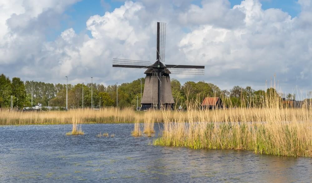 Landschap in Noord-Holland met typische windmolen.