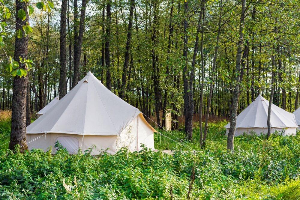 Glamping Safari tenten in de bossen.