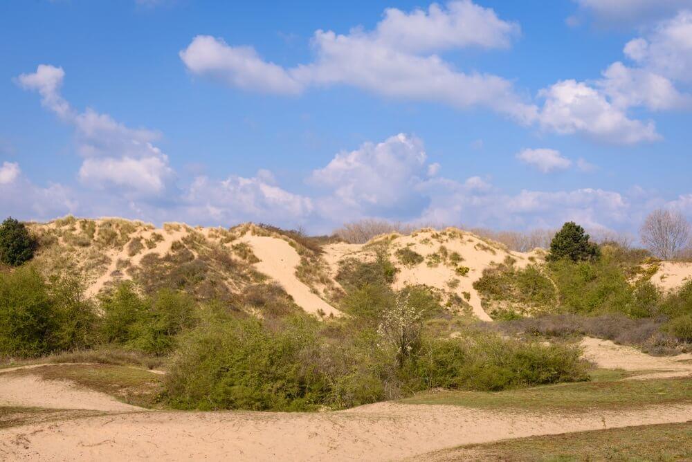 De hoge duinen bij Oostduinkerke, België.