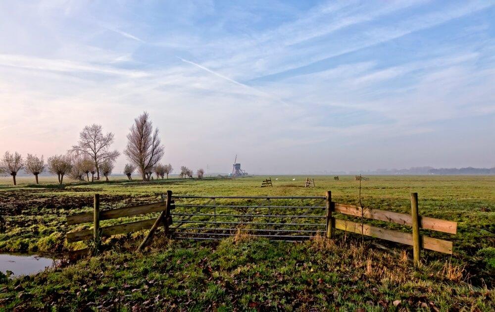 Typisch polderlandschap in Zuid-Holland, Nederland.