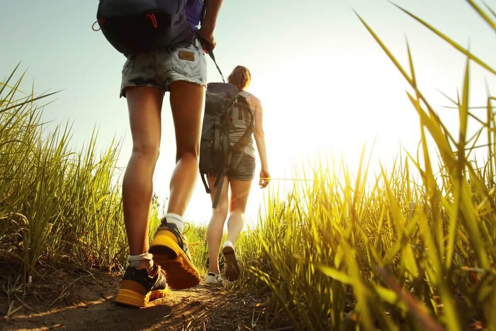 Wandelaars met rugzakken wandelen door een weide met weelderig gras.