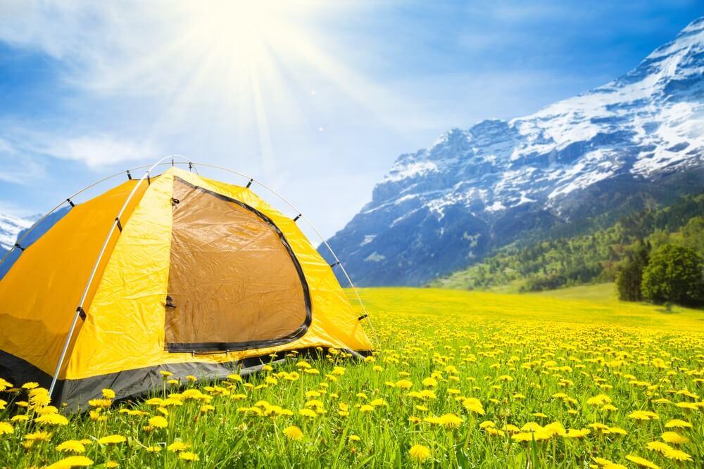 Grote gele familie formaat camping tent in de mooie gele paardenbloem veld met bergen op de achtergrond.
