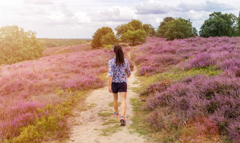 Wandelpad in Nationaal Park de Hoge Veluwe. Vrouw wandelt vooruit.
