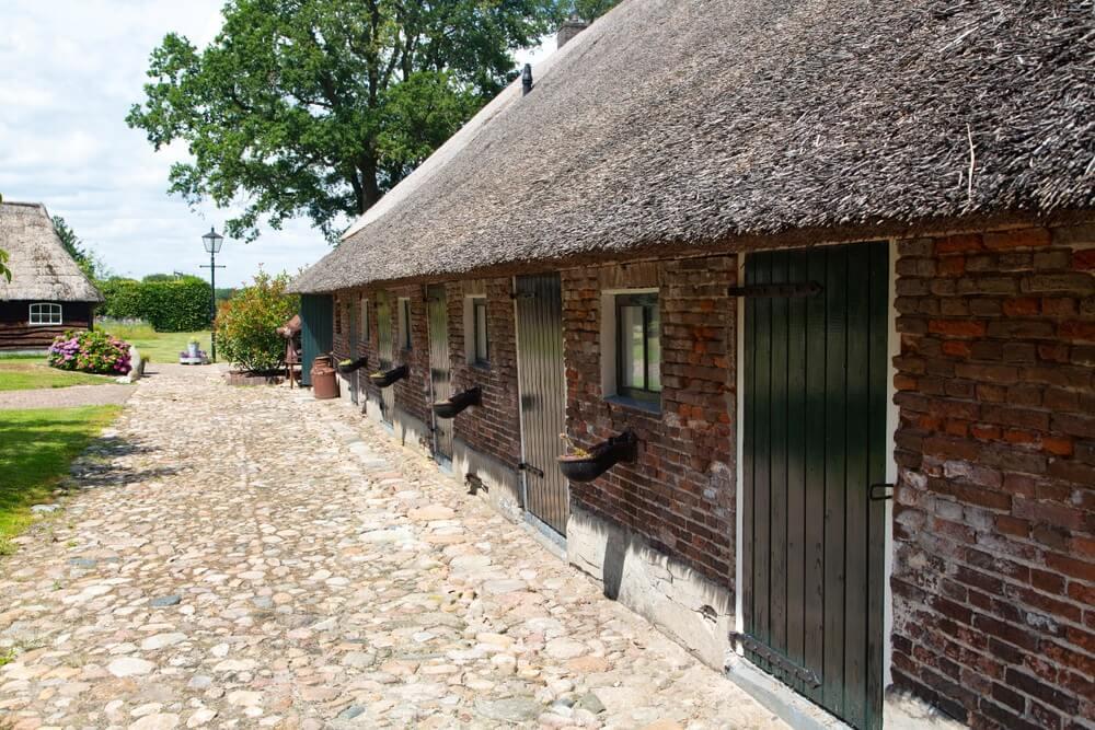 Typisch brinkdorpje in Drenthe, met zijn oude Saksische boerderijen.