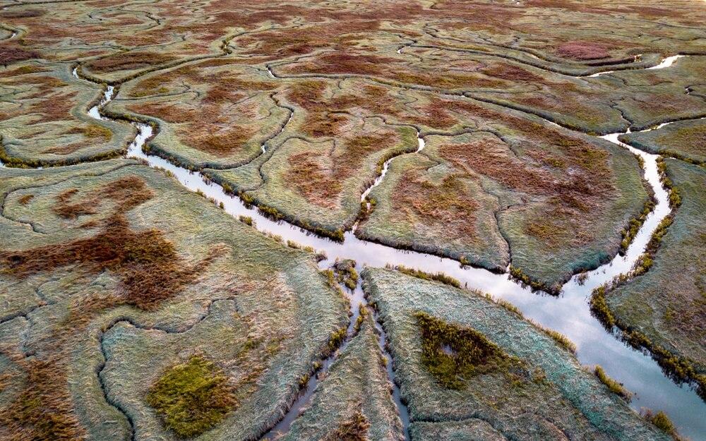 Luchtfoto van getijdenmoerassen met natuurlijk meanderend drainagesysteem in Verdronken land van Saeftinghe in Zeeland, Nederland.