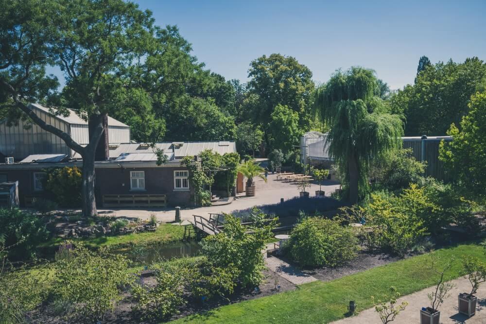 Hoge hoek van botanische tuinen in Delft.