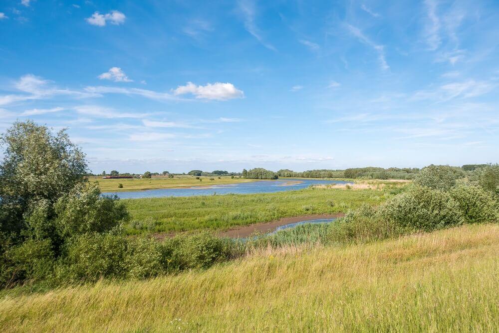 Panorama van natuurgebied Breemwaard in uiterwaarden van de Waal vanaf dijk op zuidoever nabij Nieuwaal, Bommelerwaard, Gelderland, Nederland.