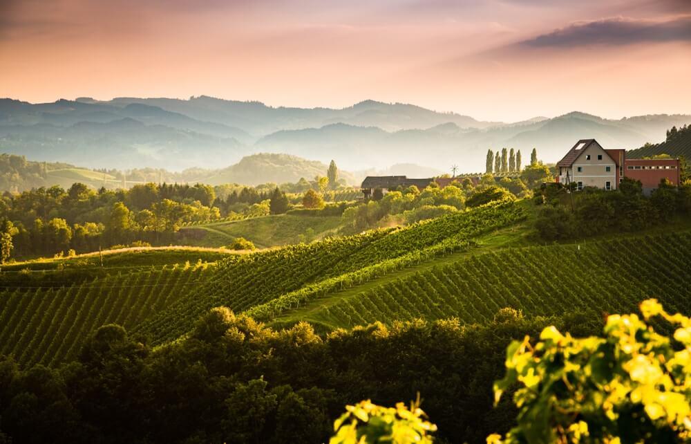 Zuid Stiermarken met zijn glooiende wijnvelden, Oostenrijk.