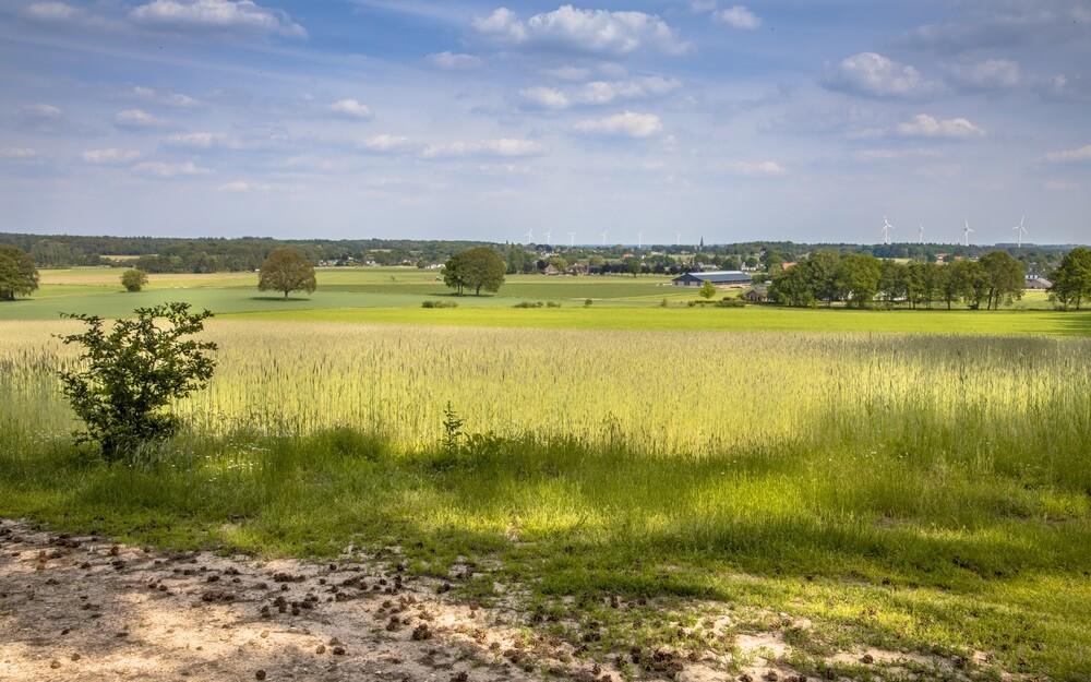 Agrarisch landschap gezien vanuit natuurgebied Bergherbos, Gelderland.