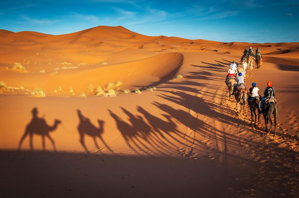 Kamelen trekking begeleide tours in Merzouga Marokko Sahara woestijn. Een van de belangrijkste bezienswaardigheden in Marokko.