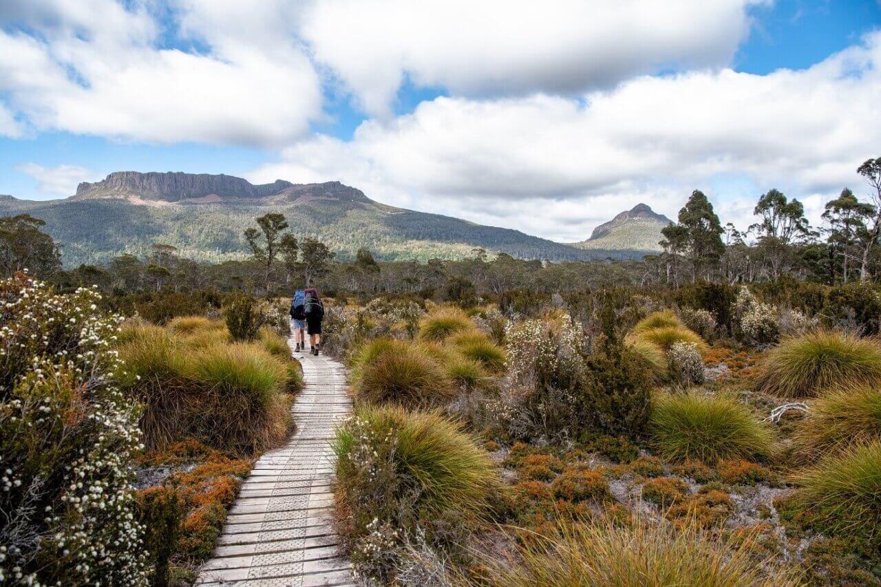 Uitgestrekte natuurgebieden waar je goed kunt hiken